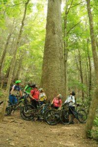 Gilmer County Biking - Things to Do Near Atlanta