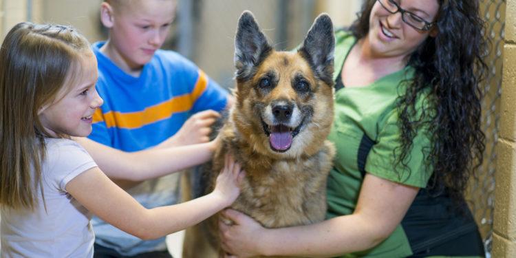 pet-friendly new homes