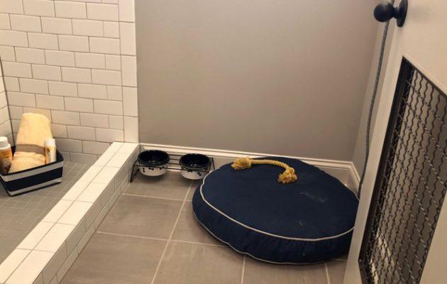 Edgewater Dog Wash Station