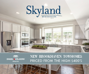 Skyland Brookhaven 1/28/19 rectangle